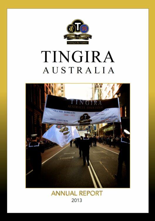 2013 annual report image